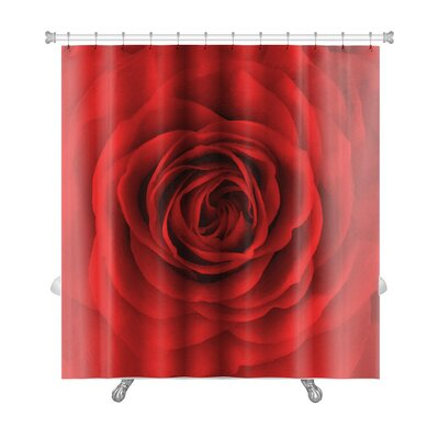 Flowers Rose Flower, Oil Painting Premium Shower Curtain