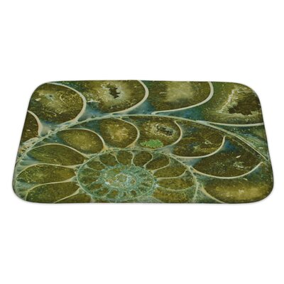 Marine Ammonite Fossil Bath Rug Size: Large