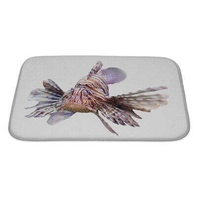 Fish Venomous Fish, Lionfish Isolated Over Bath Rug Size: Large
