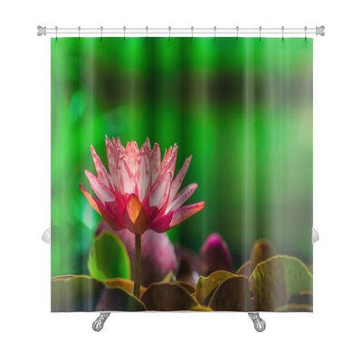 Nature Dallas Shower Curtain