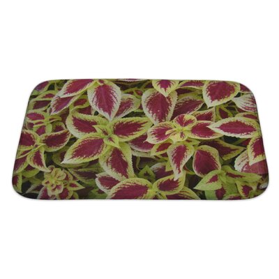 Flowers Florida Plants Bath Rug Size: Large