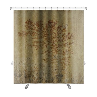Bravo Close Up of Fossil Ferns Petrified in a Stone Slab Premium Shower Curtain