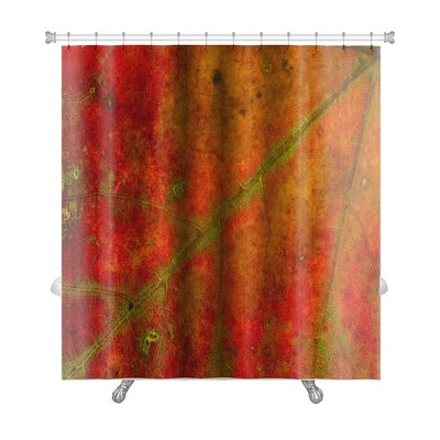 Gamma Structure of An Autumn Leaf Premium Shower Curtain