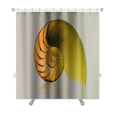 Marine Fibonacci Pattern on Shell Viewed Spiral from Front Premium Shower Curtain