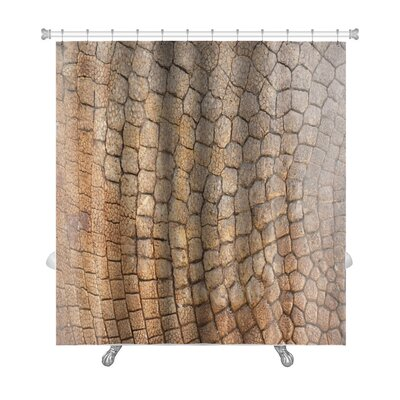 Delta Bone Armor Premium Shower Curtain