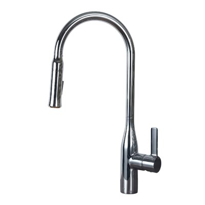 Single Handle Pull Down Kitchen Faucet Finish: Chrome