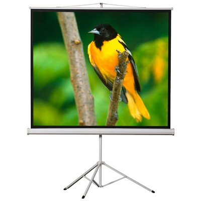 White Portable Projection Screen Viewing Area: 120 Diagonal (72 x 96)