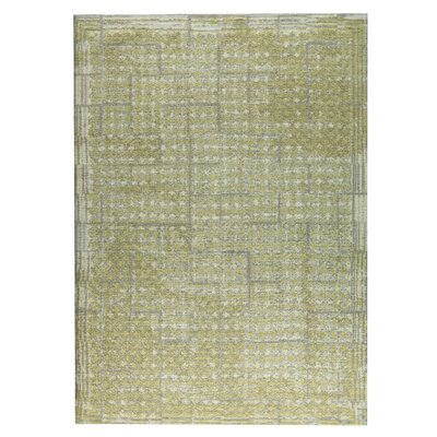 Burbank Hand-Woven Green/Yellow Area Rug Rug Size: 4 x 6