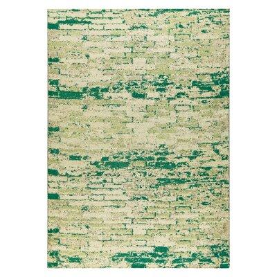 Fargo Hand-Woven Green Area Rug Rug Size: 2 x 3