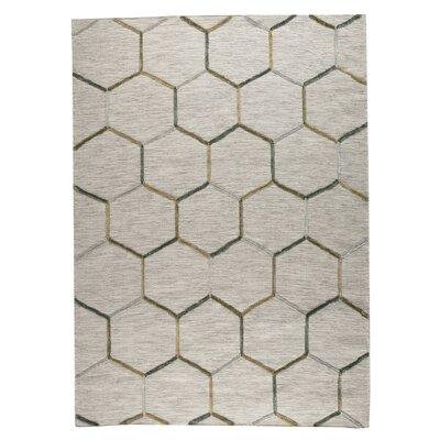 Khema 2 Hand-Woven Gray Area Rug Rug Size: 56 x 710