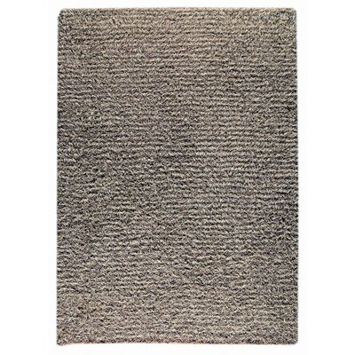 Tokyo Hand-Knotted Gray Area Rug Rug Size: 46 x 66