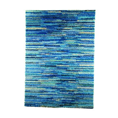 Mat Mix Hand-Woven Blue Area Rug Rug Size: 46 x 66