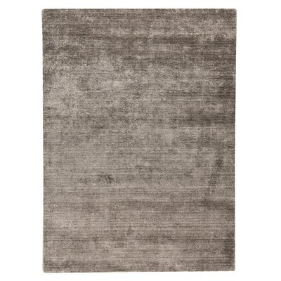 Platinum Hand-Woven Taupe Area Rug Rug Size: 56 x 710