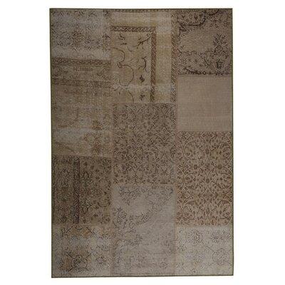 Konya Hand woven Sand Area Rug Rug Size: 52 x 76