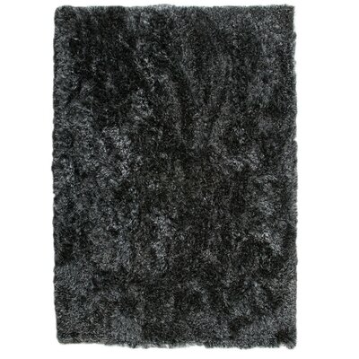 Dubai Hand-Woven Licorice Area Rug Rug Size: 66 x 99