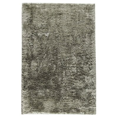 Sunshine Hand-Woven Silver Area Rug Rug Size: 8 x 10