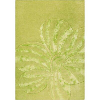 Jasmine Hand-Tufted Sage Area Rug Rug Size: 83 x 116