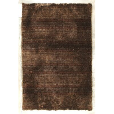 Delhi Hand-Woven Brown Area Rug Rug Size: 5 x 8