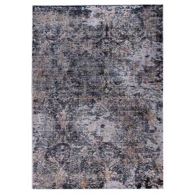 Mehran Hand-Woven Dark Gray Area Rug Rug Size: 2 x 3