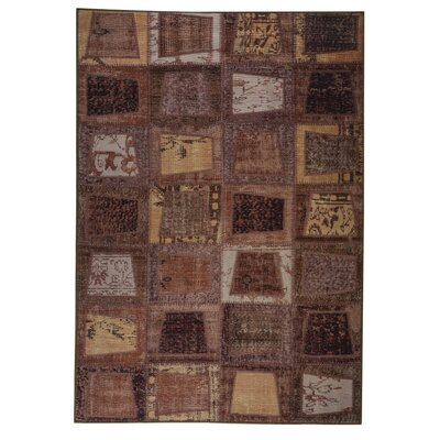 Bursa Hand woven Brown Area Rug Rug Size: 52 x 76