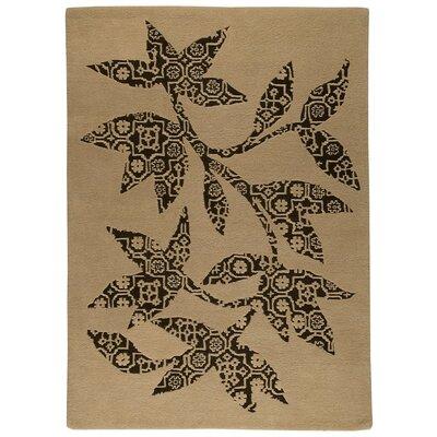 Samarkand Hand-Tufted Beige/Black Area Rug Rug Size: 56 x 710