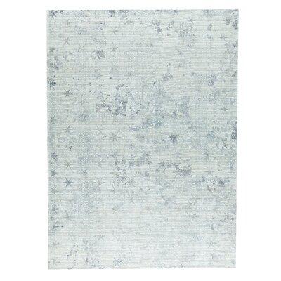 Terni Hand-Woven Gray Area Rug Rug Size: 2 x 3