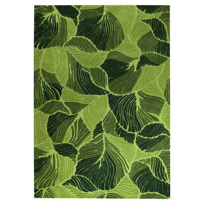 Oasis Hand-Tufted Green Area Rug Rug Size: 52 x 76