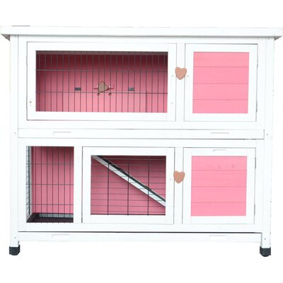 Lovupet Chicken Coop and Rabbit Hutch Color: Pink