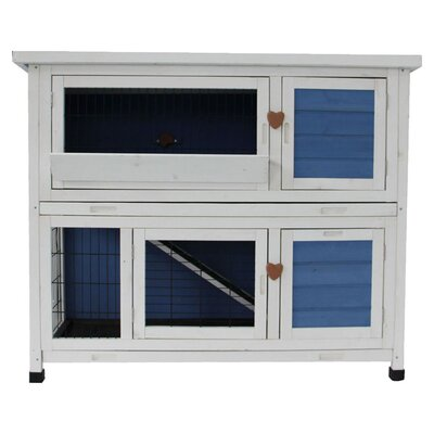 Lovupet Chicken Coop and Rabbit Hutch Color: Blue