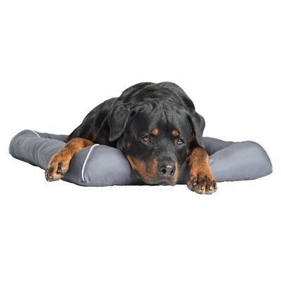 Loudon TheraCool Cooling Gel Pet Bed Size: Large (36 L x 23 W)