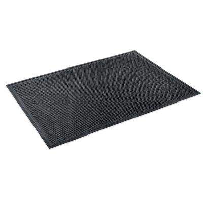 Scrapper Doormat Mat Size: Rectangle 3 x 5