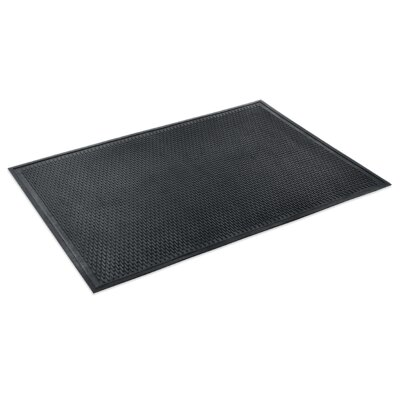 Scrapper Doormat Rug Size: Rectangle 4 x 6