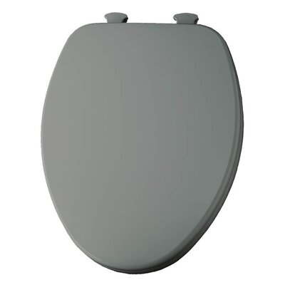 Church Lift Off Wood Elongated Toilet Seat Finish: Ice Gray