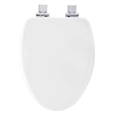 Church Wood Slow Close Elongated Toilet Seat Finish: White, Hinge Finish: Chrome
