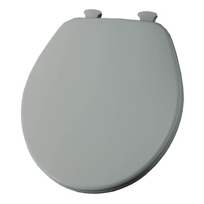 Church Lift Off Wood Round Toilet Seat Finish: Ice Gray
