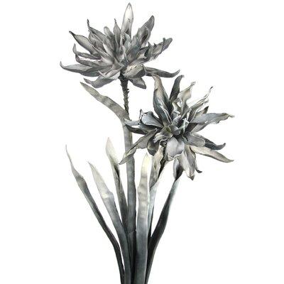Desert Flower F500.500