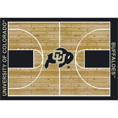 College Court Colorado Buffaloes Rug Rug Size: 78 x 109