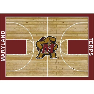 College Court Maryland Terrapins Rug Rug Size: 109 x 132