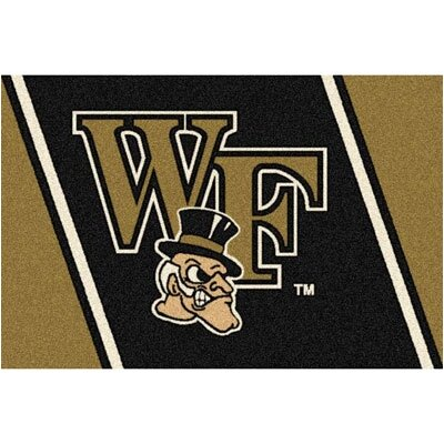 Collegiate Wake Forest University Demon Deacons Mat Rug Size: 54 x 78