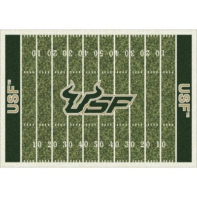 NCAA Home Field South Florida Novelty Rug