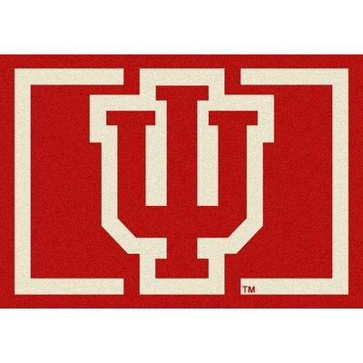 Collegiate University of Indiana Hoosiers Mat Rug Size: 54 x 78