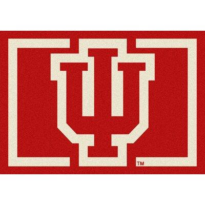 Collegiate University of Indiana Hoosiers Mat Rug Size: 310 x 54