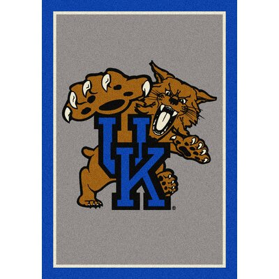 Collegiate University of Kentucky Wildcats Mat Mat Size: Rectangle 310 x 54