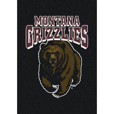 Collegiate University of Montana Grizzlies Mat Rug Size: 54 x 78