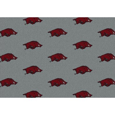 Collegiate II Arkansas Hogs Rug Size: 109 x 132