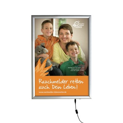 Smart LED Poster Box Size: 11 x 17, Color: Silver