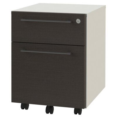 2 Drawer Mobile Filing Cart with Lock