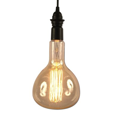 60W E26 Incandescent Antique Vintage Filament Light Bulb