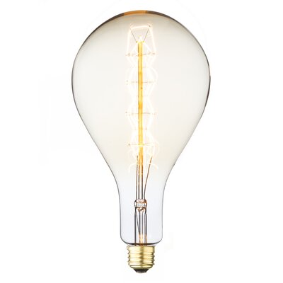 60W E26 Incandescent Vintage Filament Light Bulb