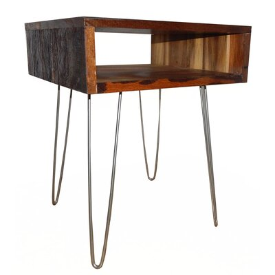 Ren End Table Finish: Stainless Steel/Solid Brown
